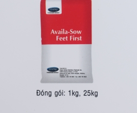 Availa  - Sow Feet First